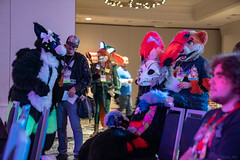 DSC09113 (Kory / Leo Nardo) Tags: pacanthro pawcon paw con pac anthro convention fur furry fursuit suiting mascot sona fursona san jose doubletree hotel california dance party deck animals costuming pupleo 2018