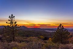 Tonight's sunset seen from Mount Laguna, California (slworking2) Tags: julian california unitedstates us mountlaguna sandiego sky trees fall autumn evergreen mountains sunset clouds weather