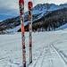 Ski in winter season
