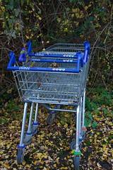 Rougham Hill, Dumped Tescos Trollys (Martin Pettitt) Tags: 2018 autumn burystedmunds dslr dumpedtrolly nikond7100 november outdoor path roughamhill suffolk trees uk