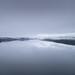 Grey Stillness