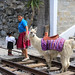 Travel in Ecuador - 3rd Place Cultural -Ron Belak