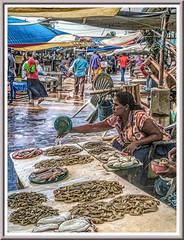 Seafood (Immagini 2&3D) Tags: fishmarket negombo srilanka