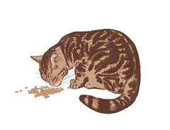 Kroketten fressen (Isaszas) Tags: manger cat katze marbré tabby skizze sktech chat essen eat eten croquis isasza