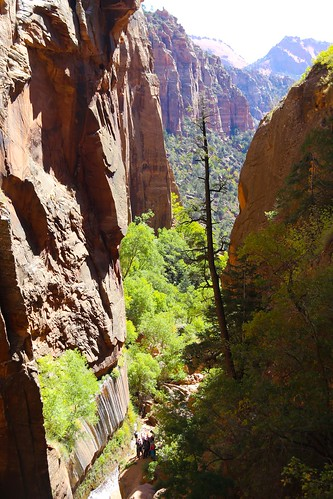 Rock The Canyons