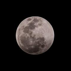 Moon (21:26) (ruifo) Tags: nikon d810 nikkor afs 200500mm f56e ed vr moon lua luna eclipse 20 21 january janeiro enero 2019 full llena cheia noite night noche astro astrophotography astrofotografia astrofotografía solar system sky ceu céu cielo earth penunbra umbra lunar mexico city cdmx ciudad méxico