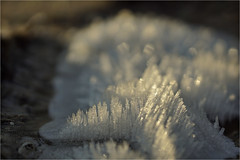 winter .............. (atsjebosma) Tags: macromondays pickb abstract bokeh atsjebosma light licht ice winter thenetherlands