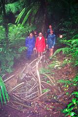 Stinson Wreck, Lamington NP, 1993 (NettyA) Tags: 1990s 1993 australia lamingtonnationalpark qld stinsonwreck bushwalk planecrash rainforest scannedprint queensland scenicrim sunshinecoastbushwalkingclub