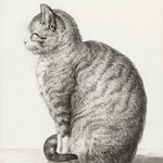 Sitting cat (1815) by Jean Bernard (1775-1883). Original from The Rijksmuseum. Digitally enhanced by rawpixel. thumbnail