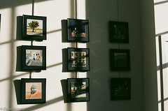 Shadows (davekrovetz) Tags: art shadows bookstore nikon nikonfe ektar film analog olddominionbookstore exhibit