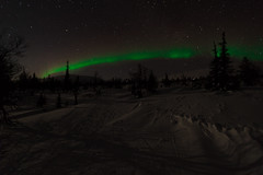 Northern lights / revontulet (akkujala) Tags: auroraborealis finland lapinluonto lapland lappi lappishnature northernlights revontulet suomi muonio pallas