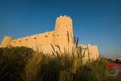 Doha, Qatar  © Neale Castelino Photography #nealecastelino #nealecastelinophotography #letscreateart (nealecastelino) Tags: nealecastelino nealecastelinophotography letscreateart