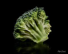 Macro Mondays - The First Letter of My Surname (Magda Banach) Tags: broccoli nikond850 thefirstletterofmysurname blackbackground colors green macro macromondays nature plants vegetable