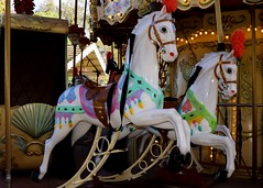 Merry Go Round (Prayitno / Thank you for (12 millions +) view) Tags: casadefruta wood wooden horse beautiful painted art colorful animal merry go round children ride day time outdoor hand craft artistic