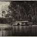 Echuca Steam Boat Canberra On the River Film Plate Style
