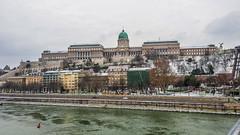 Buda Castle (mwdent91) Tags: budapest hungary budacastle budaváripalota