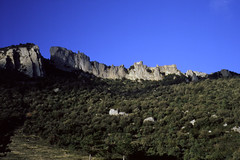 Château de Peyrepertuse (Philippe_28) Tags: peyrepertuse château castle 11 aude occitanie duilhacsouspeyrepertuse france ruines ruins forteresse cathare europe 24x36 argentique analogue camera photography film 135 ektachrome slide