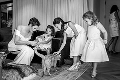 Sundays are for kitty cats and cuddles and intimate weddings in really cool houses 👍 #sundaywedding #catsofinstagram #flowergirldress #weddingdress #weddingmoments #weddingdocumentary #weddingreportage #wpja #huffpostwedding #weddingphotographers (parada.studio) Tags: paradastudio paradaphotography parada studio photography wedding bride bridal magazine photographers san diego los angeles orange county southern california socal photos pics pictures engagement engaged just ideas married white dress venue venues