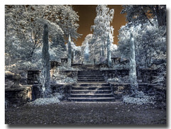 """Steps up from the """"POEM"""" at Bodnant Gardens 2 of 2 (Blueman-2) Tags: 2018 ir ir720nm infrared infra red olympusepl1 olympus1242mmf3556 olympus epl1 bodnantgardens nationaltrust canonef28135f3556is"""