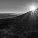 Mono Sundown