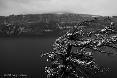 First Snow of the Season at the Columbia River (Gary L. Quay) Tags: columbiagorge columbiarivergorge oregon washington snow winter 2018 river ruthtonpark ruthtonpoint gloomy brooding blackandwhite garyquay nikon