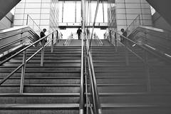 Parallel Universe (Douguerreotype) Tags: urban monochrome underground city bw station uk british england mono blackandwhite architecture britain reflection stairs london symmetry gb subway people steps tube