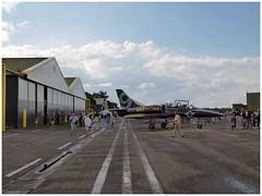 Aero Vodochody L-39C Albatros - ES-TLC (Breitling Jet Team) (Aerofossile2012) Tags: aerovodochody l39c albatros estlc breitling jet team avion aircraft aviation meetingdefrance airshow dijon longvic ba102 2017