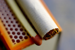 -Leave me alone! (Fnikos) Tags: macro tobacco tabaco cigarette cigarrillo cerilla fósforo match box bokeh