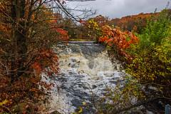 Westbrook Park_4589 (smack53) Tags: smack53 foliage fall fallseason fallcolors autumn autumnseason autumncolors colorful westmilford newjersey nikon d100 nikond100