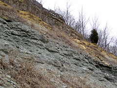 Slade Formation over Renfro Member over Nada Member (Mississippian; Interstate-64 roadcut north-northeast of Morehead, Kentucky, USA) 2 (James St. John) Tags: slade renfro nada border formation member mississippian morehead kentucky