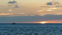 Lonely (Migge88) Tags: lapalma2019 urlaub la palma kanaren canaries vögel birds tazacorte harbor boat boot sunset sonnenuntergang sun sonne meer sea wasser water wave wellen blau blue sky himmel gelb yel yellow fischer fishing sony alpha 6500