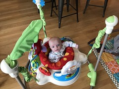 """Luc in His Bouncer • <a style=""""font-size:0.8em;"""" href=""""http://www.flickr.com/photos/109120354@N07/39967548043/"""" target=""""_blank"""">View on Flickr</a>"""