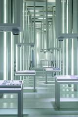 Cool Room (*Capture the Moment*) Tags: 2019 abstract abstrakt architecture bmw bmwmuseum focalpoint fokus fotowalk interiordesign minimalism minimalismus munich münchen sonya7m2 sonya7mii sonya7mark2 sonya7ii sonyfe1635mmf4zaoss sonyilce7m2 indoor