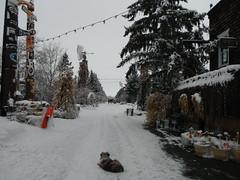 Puppy Waiting ..... (Mr. Happy Face - Peace :)) Tags: snow albertabound art2018 winter alberta canada trees yyc saskatoonfarm outdoors weather snowing love wtbw treemendoustuesday
