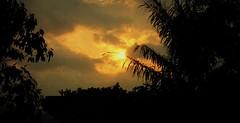 "INDONESIEN, Sulawesi  - Abendstimmung , 17792/10825 (roba66) Tags: sulawesi urlaub reisen travel explore voyages rundreise visit tourism roba66 asien asia indonesien indonesia insel celebes island île insulaire isla sonnenuntergangsunsetsundownatardecer abecedario amanecersonnesunsoleilcouchantsoleillevant surise sonenaufgang sonne sol sun sky himmel sonnenuntergang sunset sundown atardecer amanecer ""coucherdesoleil"" soleil sole sonnenaufgang «leverdesoleil» sunrise alba «salidadelsol» ciel clouds landschaft landscape paisaje nature natur"