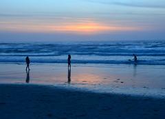 DSC_0165 (afagen) Tags: california pacificgrove asilomarstatebeach montereypeninsula asilomar beach pacificocean ocean sunset dusk