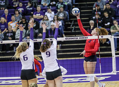 Washington Arizona-FT4I2029 (Pacific Northwest Volleyball Photography) Tags: volleyball ncaa pac12 pac12vb womensvolleyball arizona washington uwhuskies