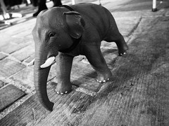 Walk About Phant