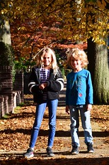 The Kids On Greenway South In The Fall (Joe Shlabotnik) Tags: foliage violet fall everett autumn 2018 november2018 afsdxvrzoomnikkor18105mmf3556ged faved