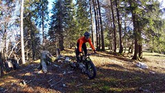 The Trail's To The Right (29in.CH) Tags: fall autumn fatbike ride 16112018