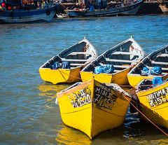 20181116-162 (sulamith.sallmann) Tags: fahrzeug gewässer verkehr afrika atlantik boot boote essaouira gelb hafen marokko meer ozean wasser sulamithsallmann