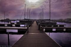 Qualcuno ci osserva (Michele Fantini) Tags: mirroreye porto sea mare sky cielo path cammino