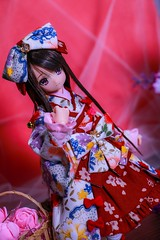 IMG_3825 (kwokt59) Tags: azone azonejp doll 16 pureneemo sahras mode yuzuha lolita dress sewing dollclothes