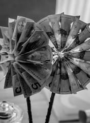 When you receive money for Christmas 💵 (diannerobbins1) Tags: gift niftyfifty nikon 50mm blackandwhite blackandwhitephotography flower money monochrome