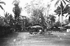 Company A 800th Military Police Battalion (Knapp Family History Photos) Tags: wwii 800th mp military police milne bay new guinea