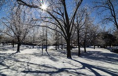 Frozen winter scene (Kool Cats Photography over 11 Million Views) Tags: frozen winter icy ice reflections cold icestorm oklahoma outdoor shadows trees photography scenic scene scenery
