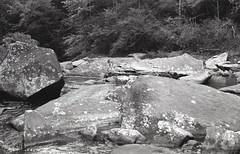 (ChazboTheThird) Tags: premium 35 mm 35mm film bw black white tmax developer develop self developed t max canon eos3 eos 3 arista rainbow falls nc north carolina gorges state park