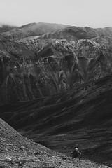 Denali, Alaska /// August 2010 (robert.m.gambill) Tags: canon 5dmarkii digital dslr canonef70200mmf4lisusmlens 70mm200mm f4 travel denalinationalpark alaska bw