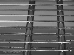 Behind Bars (MJ Taylor) Tags: blackandwhitephotography abstractphotography mjtaylorphotography olympusem1 microfourthirds macrophotography closeup focus two lines reflection lightanddark