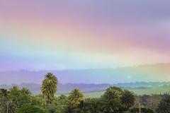 Haleiwa Rainbow Scenic (Ricosurf) Tags: 2018 qualifyingseries qs63 qs10k 10 000 surf surfing worldsurfleague wsl triplecrown vtcs haleiwa hawaiianpro scenic haleiwarainbowscenic haleiwaoahu hawaii usa